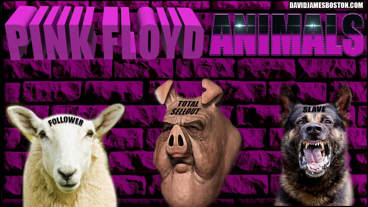 Pink floyd animals - Pink Floyd