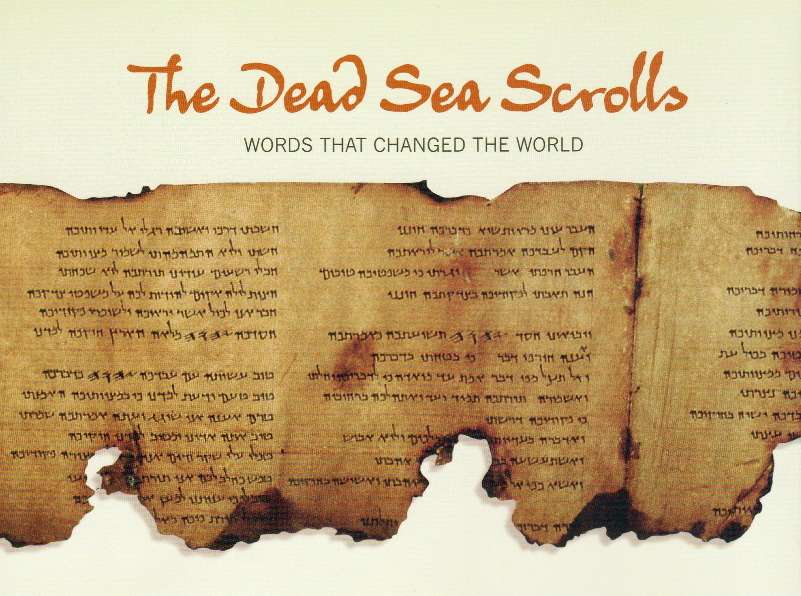 dead sea scrolls Dead sea scrolls dead sea scrolls: what are they the dead sea scrolls have been called the greatest manuscript discovery of modern times they were discovered between 1947 and 1956 in eleven caves along the northwest shore of the dead sea this is an arid region 13 miles east of jerusalem and 1,300 feet below sea level.
