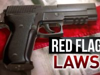 Red Flag Laws Will Trigger the Second American Revolution