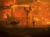 Australia Wildfire Report